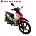 PT110-KY 2020 New Design 50cc 110cc