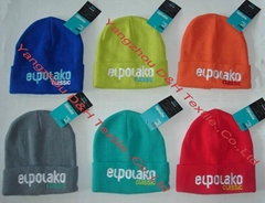 Promotional Beanie/Winter hat/Knitted Hat