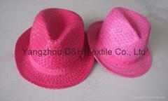 Fashional Paper Straw Hat/Sun Hat/Sunmer Hat (DH-LH9103)