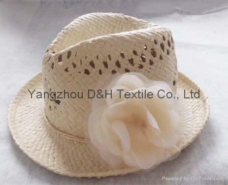 Fashional Girl Summer Hat/Sun Hat/Straw Hat (DH-LH9111) 1