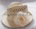 Fashional Girl Summer Hat/Sun Hat/Straw