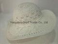 Paper Straw Wide Brim Hat / Sun Hat /Summer Hat (DH-LH9121)