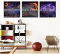 2016Optical fiber (not LED) luminous painting, flash decoration dynamic painting