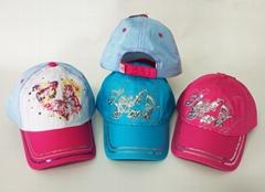 Baseball Cap/Snapback Cap