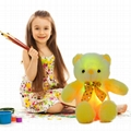 Stuffed Teddy Bear Gift Toy with LED Night Light, 20-Inch