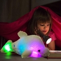 Creative Colorful LED Light Stuffed Animal Toy Glowing Dolphin Plush Toys 2