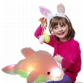 Creative Colorful LED Light Stuffed Animal Toy Glowing Dolphin Plush Toys 3
