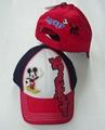 Fashional 100% Cotton Embroidery Cotton Baseball/Sports Cap