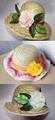 Ladies Fashion Straw Hats /Summer Straw Hats