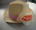 Ladies Fashion Straw Hats /Summer Straw Hats 3
