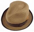 Fashional Girl Summer Hat/Sun Hat/Straw Hat (DH-LH9111) 2