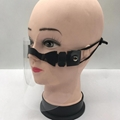 Fashion Protective Isolation Mask Face Glass Shield