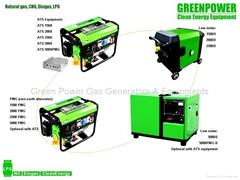 Natural gas generator set 2500