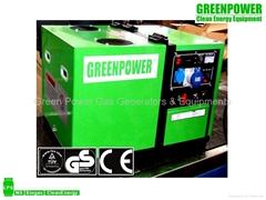 Natural gas generator set 5000D-NG