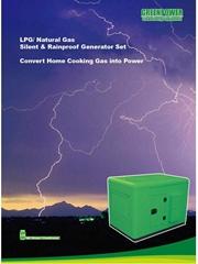 Silent Rainproof Biogas LPG Natural Gas Generator Set