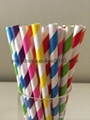 Party Paper straws  2