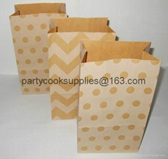 Stand Up Paper Bag  Shopping Bag