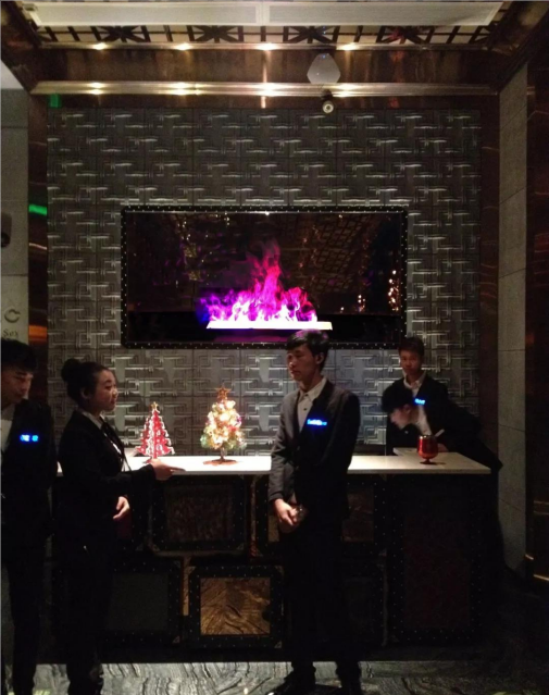 SHK 3D Fireplace at King's Hill 38 Western St.,  4