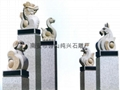 Zodiac granite carving stone horse