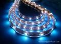 SMD 5050 300 LED Waterproof - Glue
