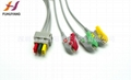 Pro 1000 3leads clip leadwires IEC