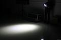LED帕燈