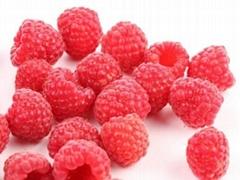 H果(艾奇)双季树莓