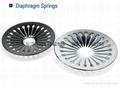 diaphragm spring 3