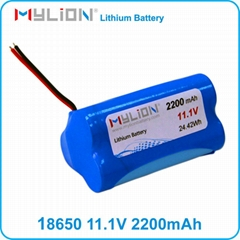 Rechargeable Lithium Battery Pack For Medical Instrument CAPA,ECG 18650 2200mah