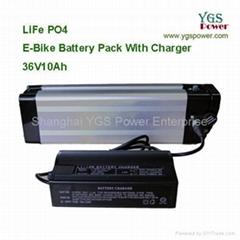 LiFe PO4 EV Battery 36V 10Ah