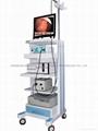 Endoscope digital image workstation