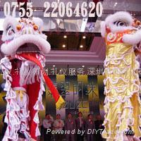 深圳舞狮 舞龙表演 舞狮团