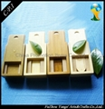 Promotion wooden USB Flash Drives
