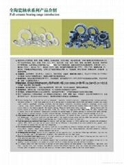 ceramic bearings,bearings,including balls,rollers,cages,rings