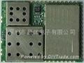 GSM/GPRS 模块 1