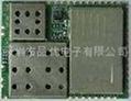 GSM/GPRS 模块 2