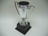 plastic trophy  cups