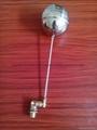 廠家直銷 槓桿式浮球閥尺寸dn15 材質304不鏽鋼球閥遙控浮球閥 2