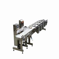 CWM-300重量分选机自动重量分选机输送带系统