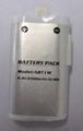 Flip Video Battery ATB1W