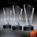 供應水晶獎牌獎杯 3
