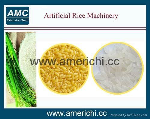 双螺杆营养大米生产线 3