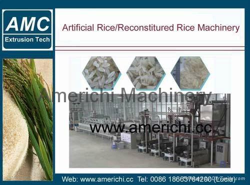 营养大米加工设备 1