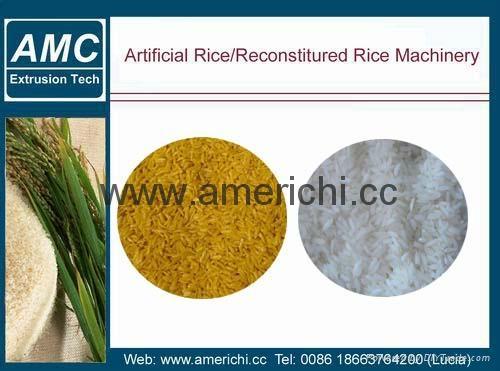 人造米生產線 1