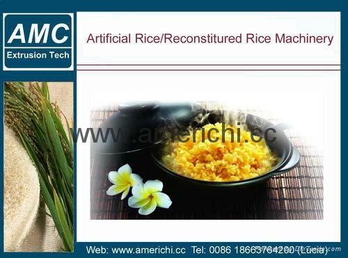 營養強化大米生產線 1