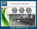 Extrusion reforced rice machines