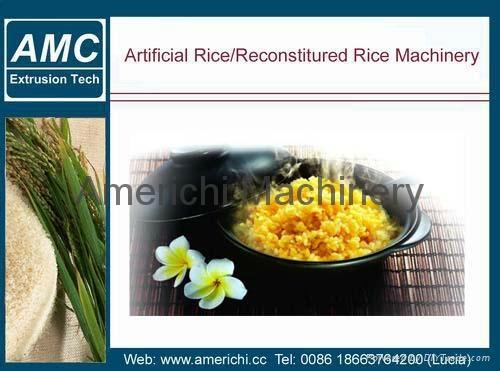 強化大米生產線