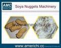Soya nuggets processing machine