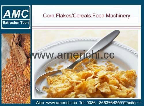 玉米片生产线 3