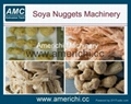 Texture soya protein food machines 1